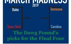 The Dawg Pound Bracket