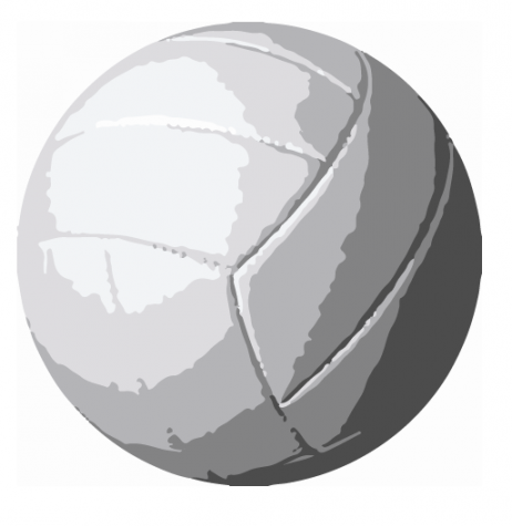 2020 Girls' Volleyball Season